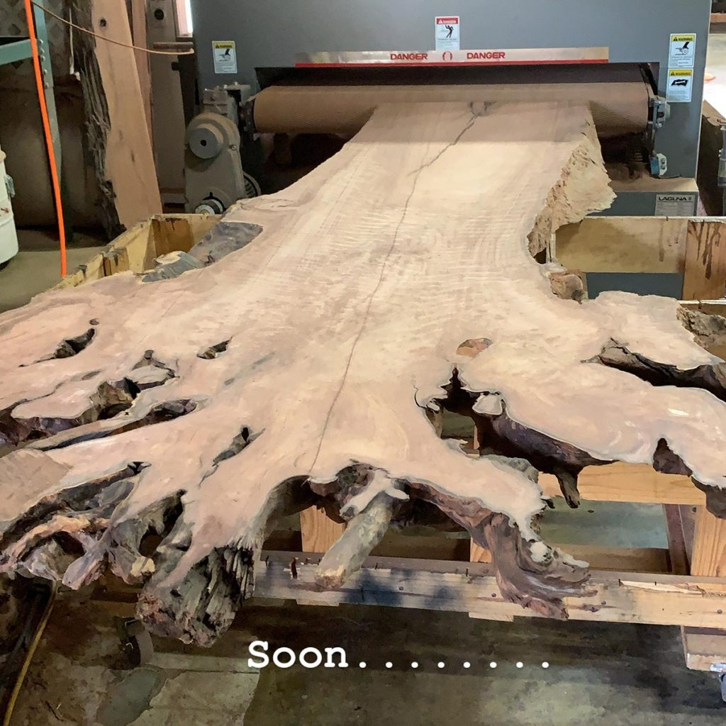 Salvaged live edge curly redwood